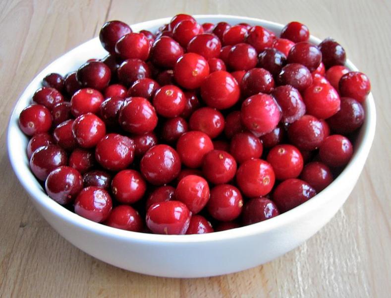 Vaccinium macrocarpon 'Pilgrim' / Großfrüchtige Moosbeere, Craneberry